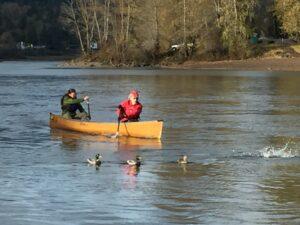 Wenonah Champlain Aramid Canoe Clackamas River Oregon