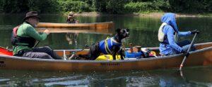 Wenonah Champlain Canoe Pit Bull Aggie McClellan